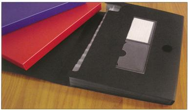 Pastas Assuntos Pendentes HFP 405 A4 Plast.c/6 Divisórias